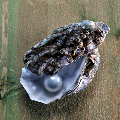 perle de culture perle de tahiti bijou perle de culture. Black Bedroom Furniture Sets. Home Design Ideas